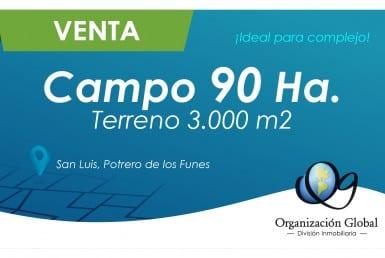 VENTA. La Corzuela. Campo 42 has. 2